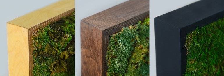 The Interior Design Trend That Brings You Closer to Nature Moss