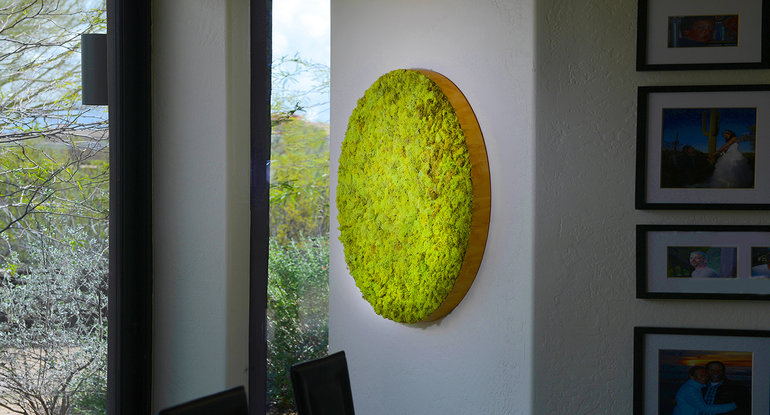 Exceptional Images: Moss Wall Art