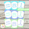 Baby Milestone Cards, Monthly, Photo Prop, First Year, Photo Signs, Print, Boy, Blue, Green by EyePop Designs