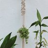Falling Leaves Plant-hanger by Naturally Macrame