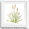 Aloe Letter Writing Set by Timeless Memories