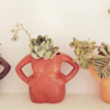 Ceramic Bust Set of 3 by Succulent Boutique SA