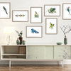 A3 print - Waxbills and Finches by Treehouse Arts