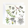 Greeting Card ~ single by CoralBloom