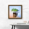 Catnip Seedling Photographic Print by Marran Art & Photography