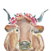 Watercolour Cow by The Pencil Project  by Meghan Maconochie