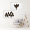Dried Proteas Print Set | Collection 2 | A2 (40x60cm) | Proteas | Flowers | Floral | Fynbos | Botanical by Sonny Mo Arts