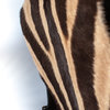 Ross Zebra Skin Leather Sling Bag by Modern & Tribal Designs