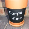 Chalkboard Plant Pot by Gecko Gifts