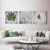 Green & Grey Photography Print Set | 60x60cm | Collection 5 | Greenery | Fynbos | Botanical | Leaves | Home Decor Wall Art | Interior  by Sonny Mo Arts