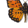 Printable Wall Art - Butterfly by Tomme Thumb