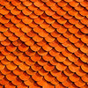 Scale Roof Tiles on Canvas by Vermeulen Photography