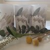GLOW LIGHTS/LANTERNS: Queen proteas (white) by TableArt
