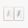 Original Small Art, a Set of 2 Leaves Pen Drawings, each in Size A4. Art for Nature Lovers made in Cape Town by WHISP by Adri