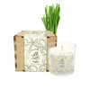 Meditation Candles in Box by Manjai