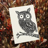 Owl illustrated card by Tatjana Buisson Design/ Illustration