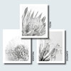 Art print: Agapanthus by TableArt