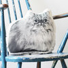 Mr. Pusskins the Persian Kitty by Ménagerie