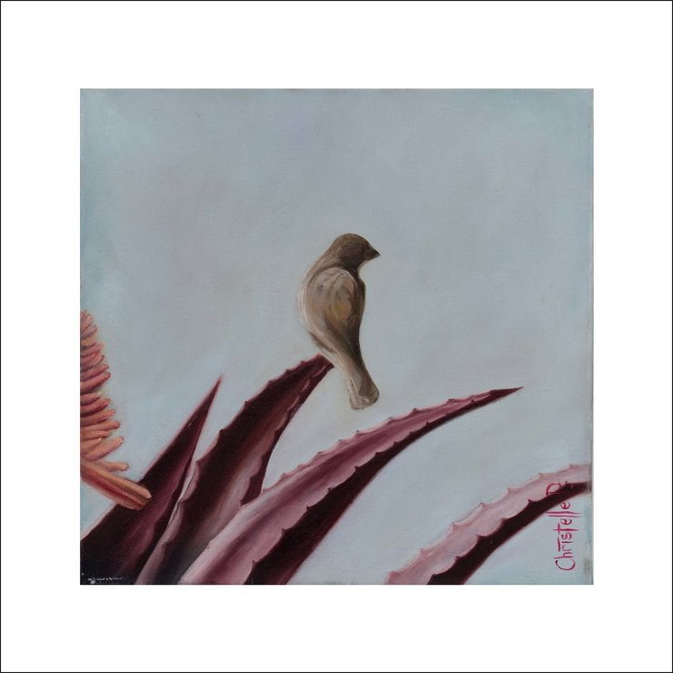 Birds and Aloes I -  Art Print by Christelle Pretorius Art