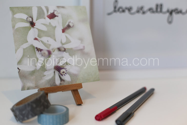 "Fine Art photographic floral print |  Image 4 |  a 5"" x 5"" Print - from the ""Bouquet of Life"" Collection  by Inspiredbyemma"