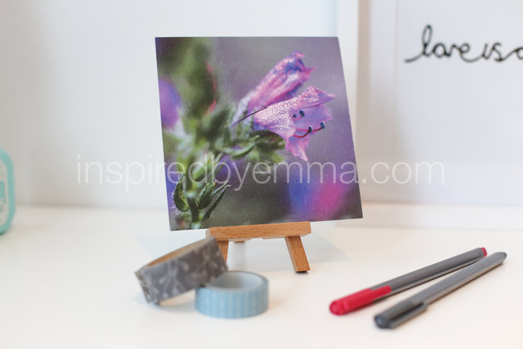"Fine Art photographic floral print |  Image 7 |  a 5"" x 5"" Print - from the ""Bouquet of Life"" Collection  by Inspiredbyemma"