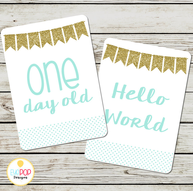 Baby Milestone Cards, Boy, Blue, Gold, Monthly, Photo Prop, First Year, Photo Signs, Print by EyePop Designs