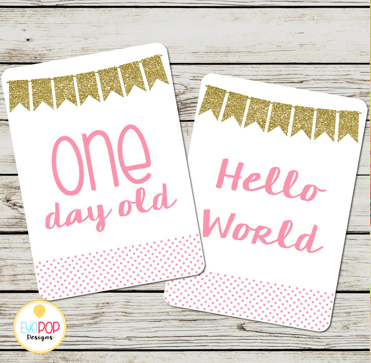 Baby Milestone Cards, Girl, Pink, Gold, Glitter, Monthly, Photo Prop, First Year, Photo Signs, Print by EyePop Designs