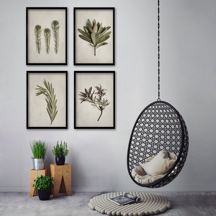 Framed Fynbos Garden Gallery Wall 4x A2 Prints In Black