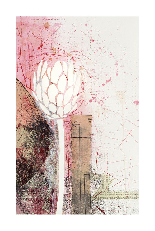 ​Botanical Illustration 05 – 'Collage' by Abundance Designs
