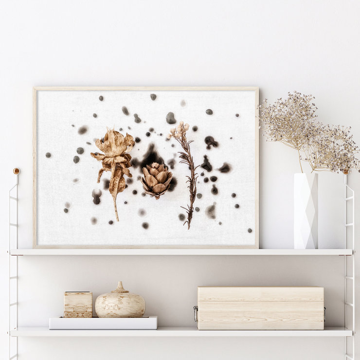 Abstract Nature Wall Art Print 15 | A1 (60x90cm) | Botanical | Floral | Flowers | Dried Flowers | Black | Natural by Sonny Mo Arts