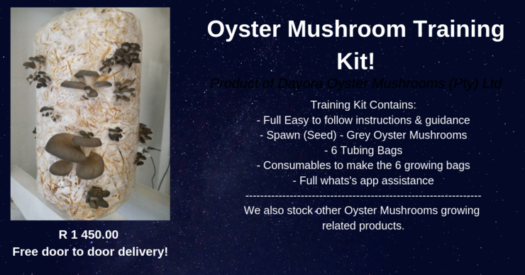 Basic Training Course Kit by Dayora Oyster Mushrooms (Pty) Ltd