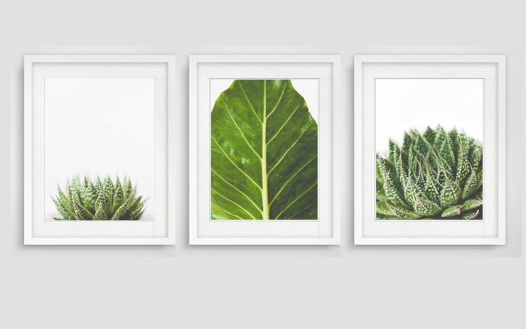 Monstera set of 3 by African Artwork