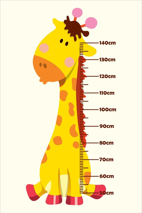 baby giraffe growth chart by canvas and wall art