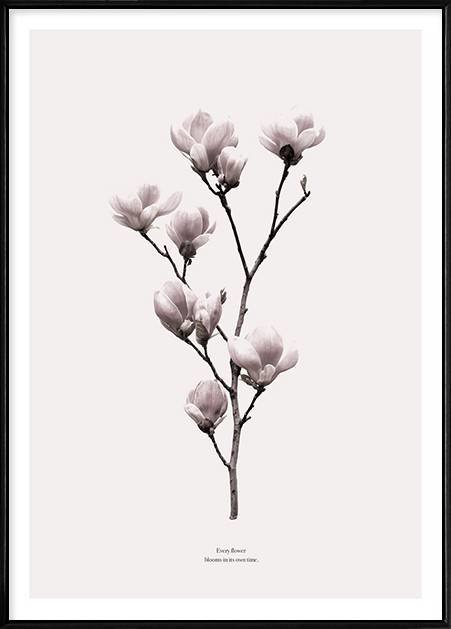 Boluo Framed Nordic Canvas Print Ready To Hang - Every Flower Blooms (500X700mm) by Boluo