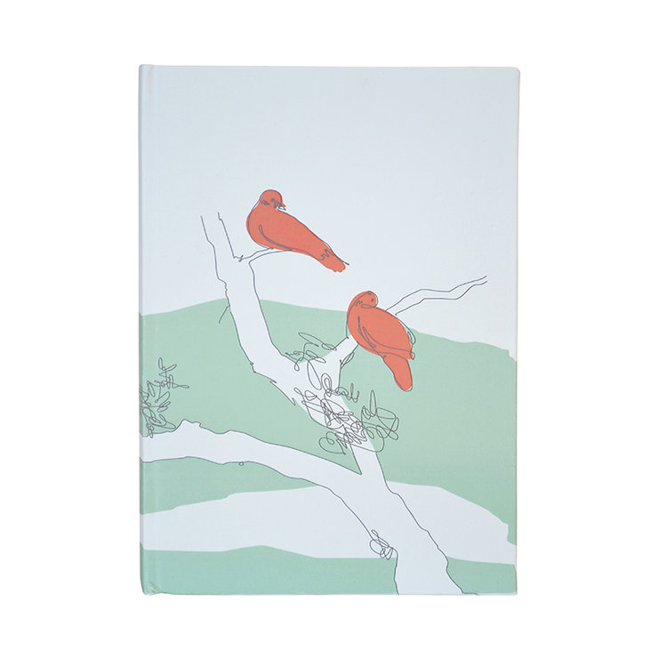 """Bird Scribbles"" A5 hardcover notebook in mint, papaya and charcoal by i Spy"