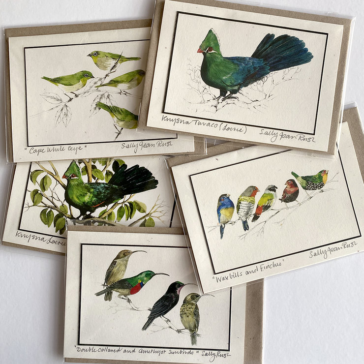 Greeting Card pack of 5 - Birds by Treehouse Arts