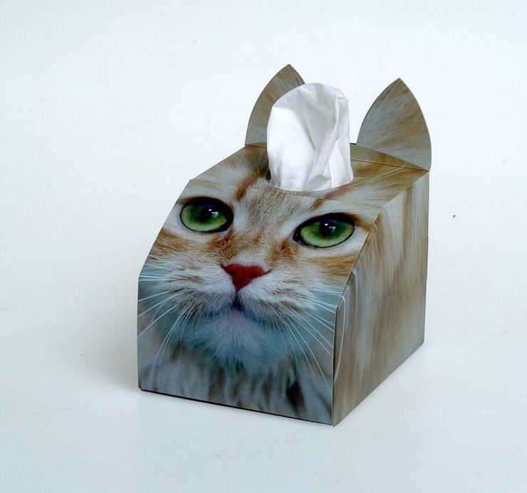 3D Tissue Box - Ginger by Cat Village