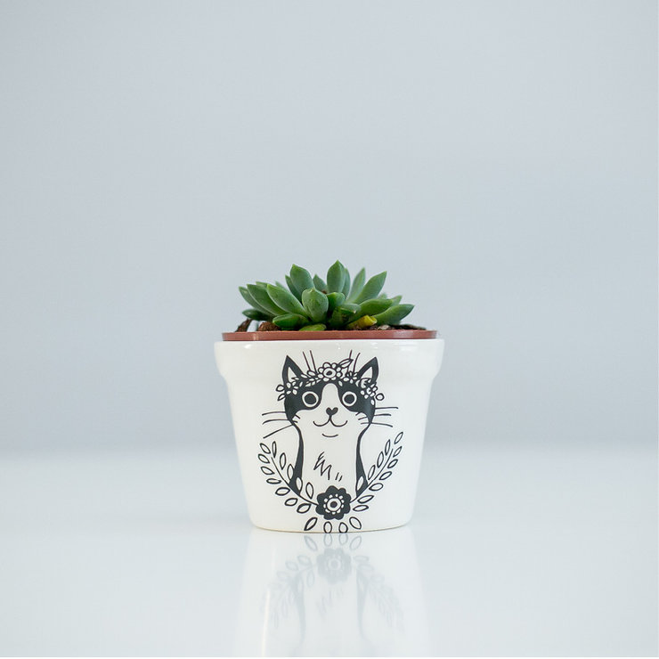 Bohemian Cat Planter by Sugar and Vice