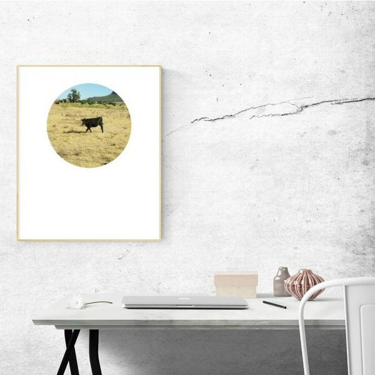 Digital Circular Print - Black Cow 1 by Prints by Roxb