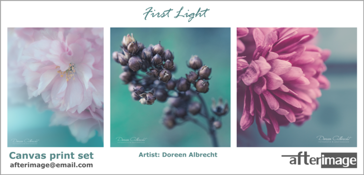 """First Light"" Printed Canvas set (300 x 840 mm) by Afterimage"