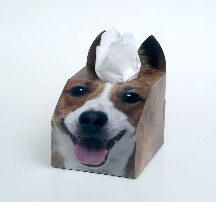 3D Tissue Box - Jack Russell by Cat Village