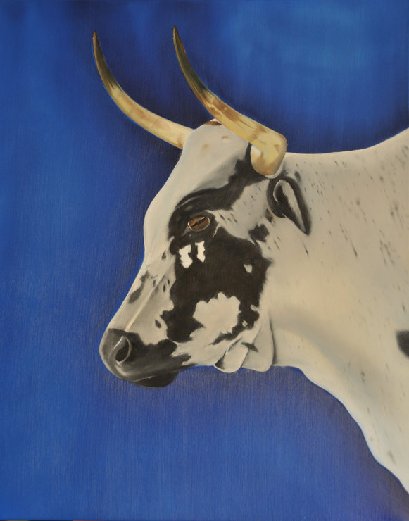 Nguni Cow, Oil on Canvas by Something Els