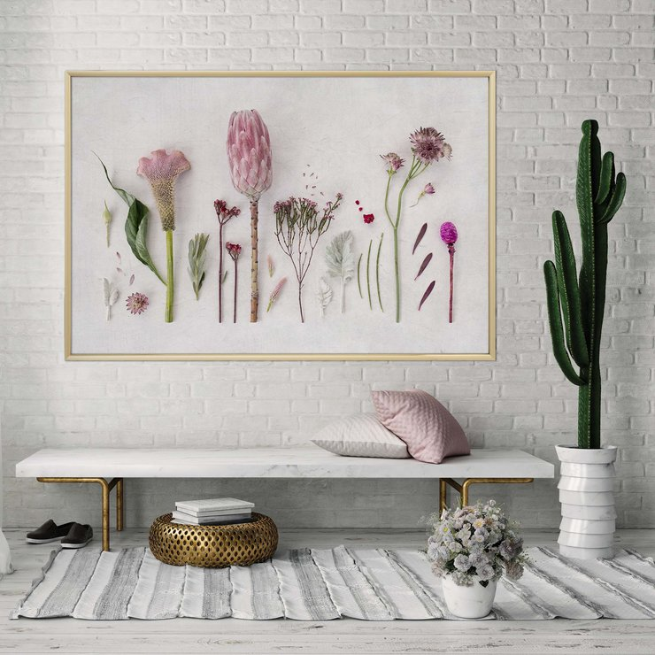 Ethereal Botanicals Print | A2 | Collection 1 | Floral Wall Art Home Decor | Flowers | Nature | Pink and White | Fynbos by Sonny Mo Arts
