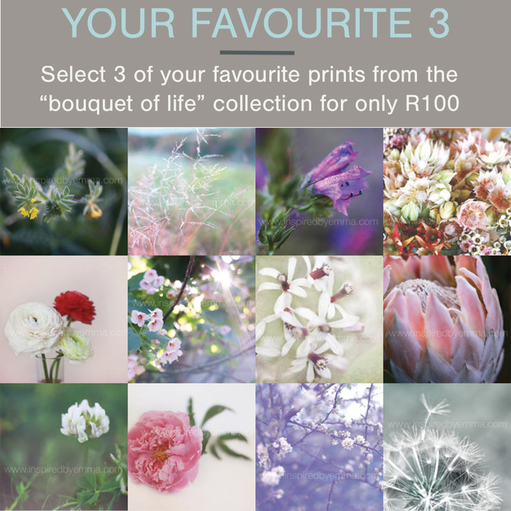 "Fine Art photographic floral print | GIFT SET OF 3 5"" x 5"" Prints - from the ""Bouquet of Life"" Collection  by Inspiredbyemma"