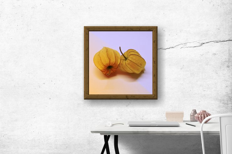 The Gooseberries Photographic Print by Marran Art & Photography