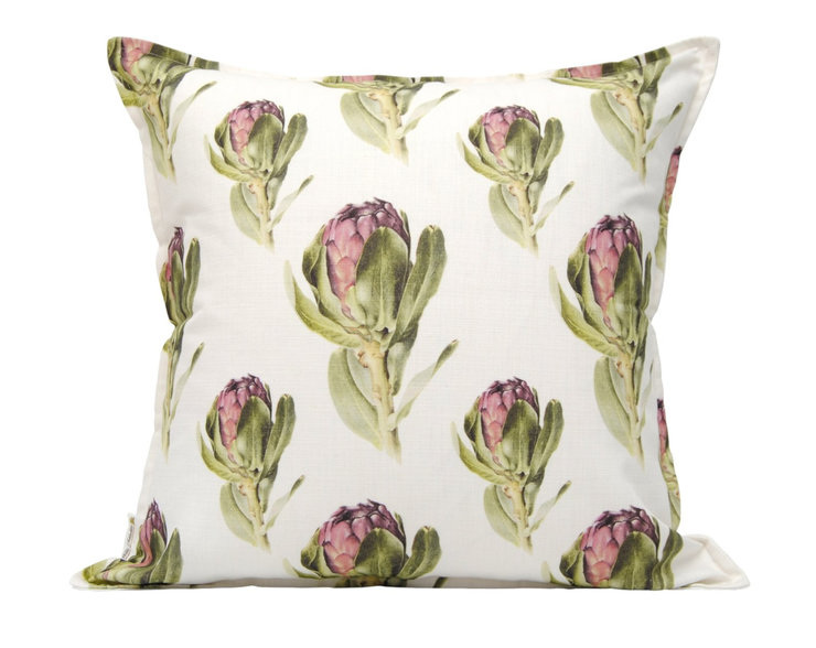 Repeat Protea grandiceps Scatter Cushion by Willie Schlechter Botanical Art & Illustration