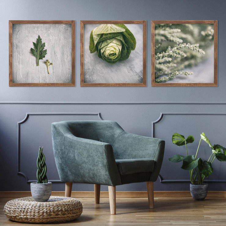 Green & Grey Photography Print Set | 40x40cm | Collection 2 | Greenery | Fynbos | Botanicals | Leaves | Floral | Flowers | Nature | Decor | Interior | Wall Art by Sonny Mo Arts