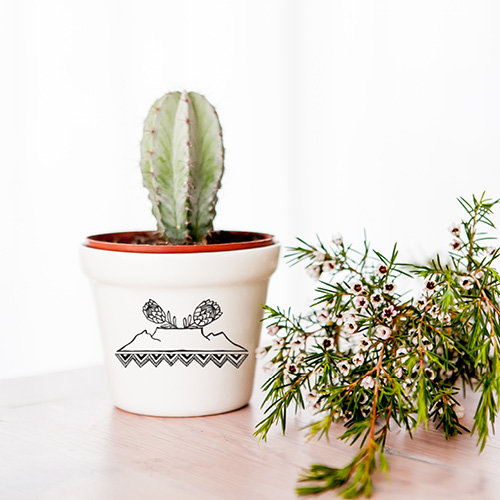 Royal Kaap Protea Planter by Sugar and Vice