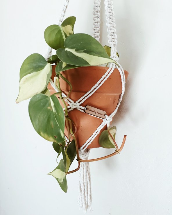Macrame Plaited Plant Hanger by Naturally Macrame