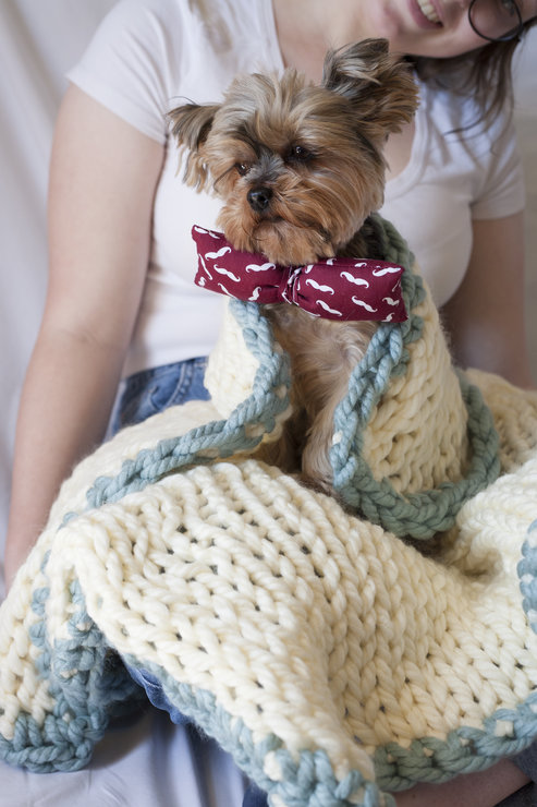 Luschious Lulu seriously chunky knit pet blanket by needle nerds